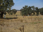 Tour De Cowra  - The Greenthorpe loop  - 01 04 2018 143